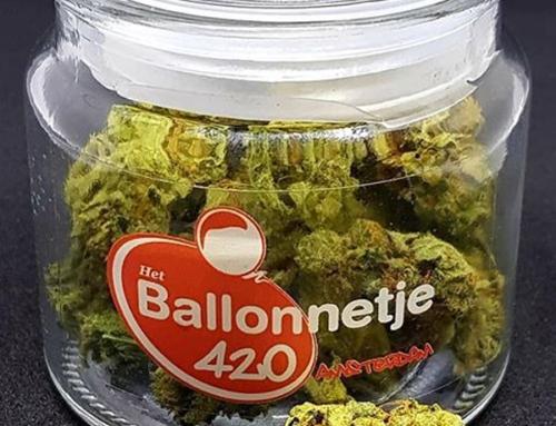 420 Special